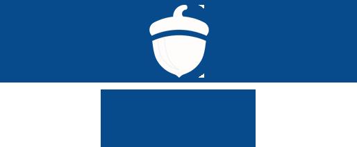 Acorn Digitial